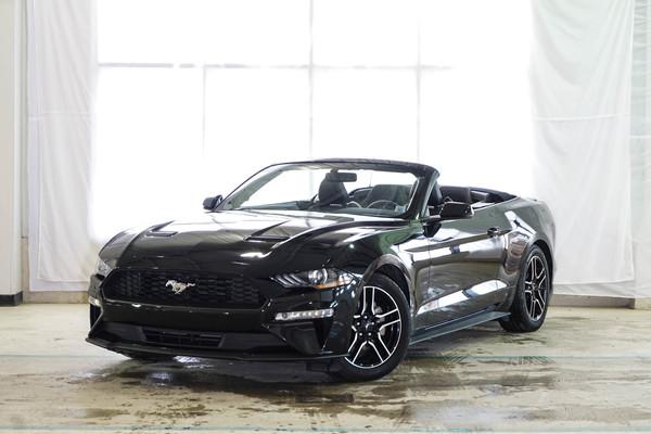 Mustang EcoBoost Premium